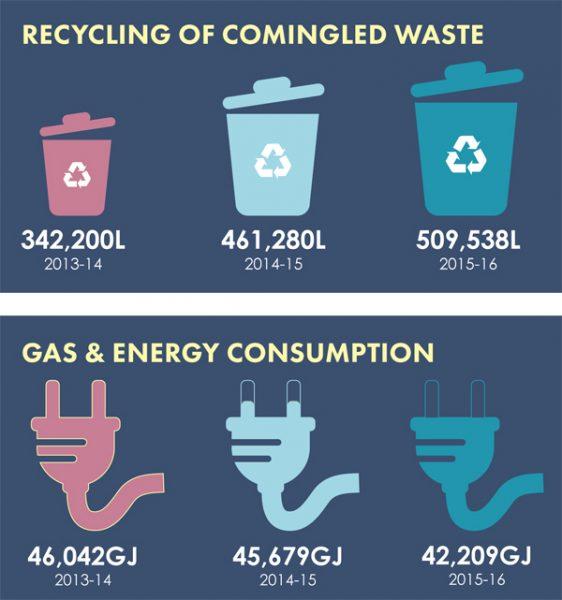 consumption & waste diagram
